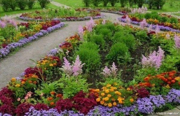 Посадка цветов под зиму. Обсуждение на LiveInternet - Российский Сервис Онлайн-Дневников
