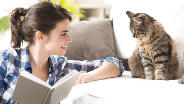 Кошка и человеческая речь, как они нас понимают?